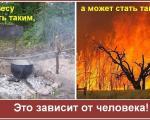poglistovka_9.jpg